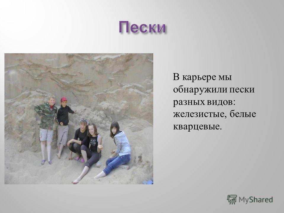 В карьере мы обнаружили пески разных видов : железистые, белые кварцевые.