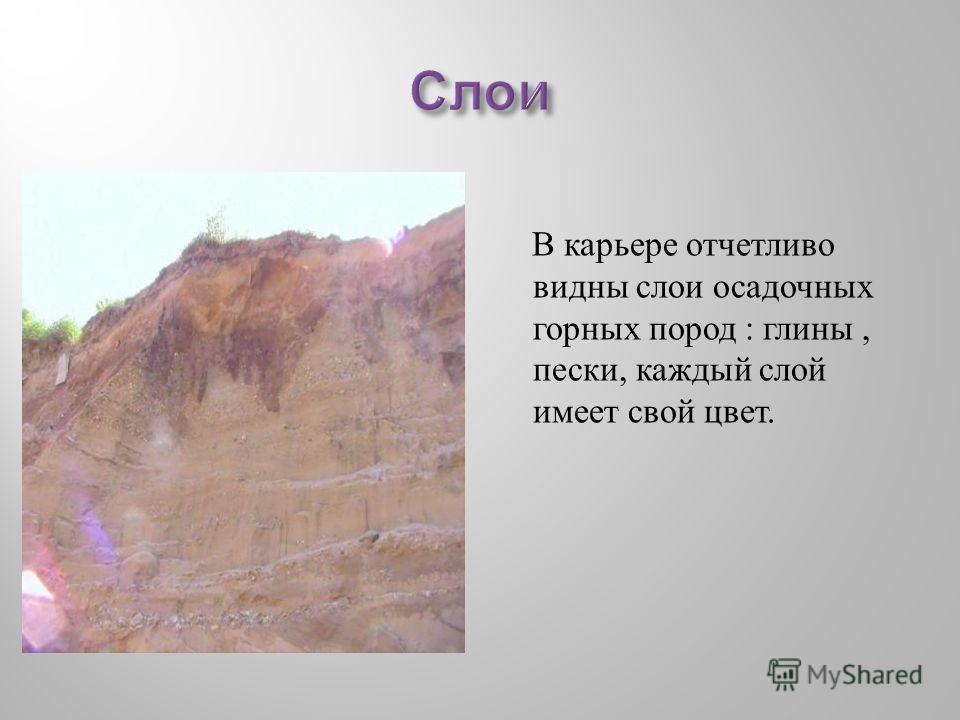 В карьере отчетливо видны слои осадочных горных пород : глины, пески, каждый слой имеет свой цвет.