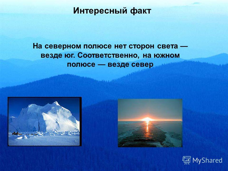 Интересный факт На северном полюсе нет сторон света везде юг. Соответственно, на южном полюсе везде север