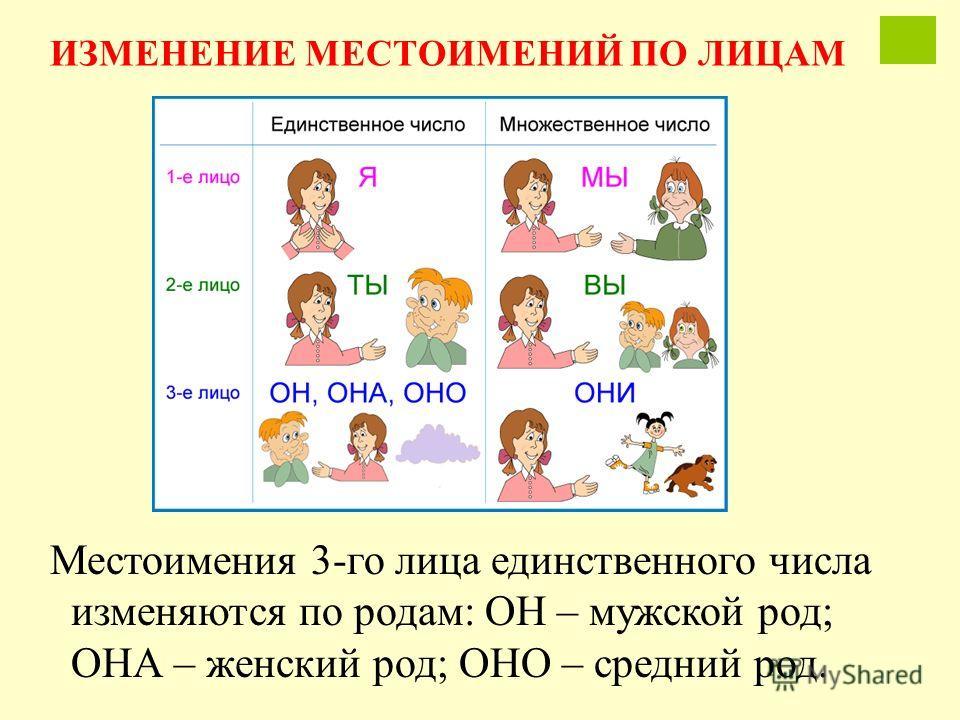 Местоимения 3-го лица единственного числа изменяются по родам: ОН – мужской род; ОНА – женский род; ОНО – средний род. ИЗМЕНЕНИЕ МЕСТОИМЕНИЙ ПО ЛИЦАМ