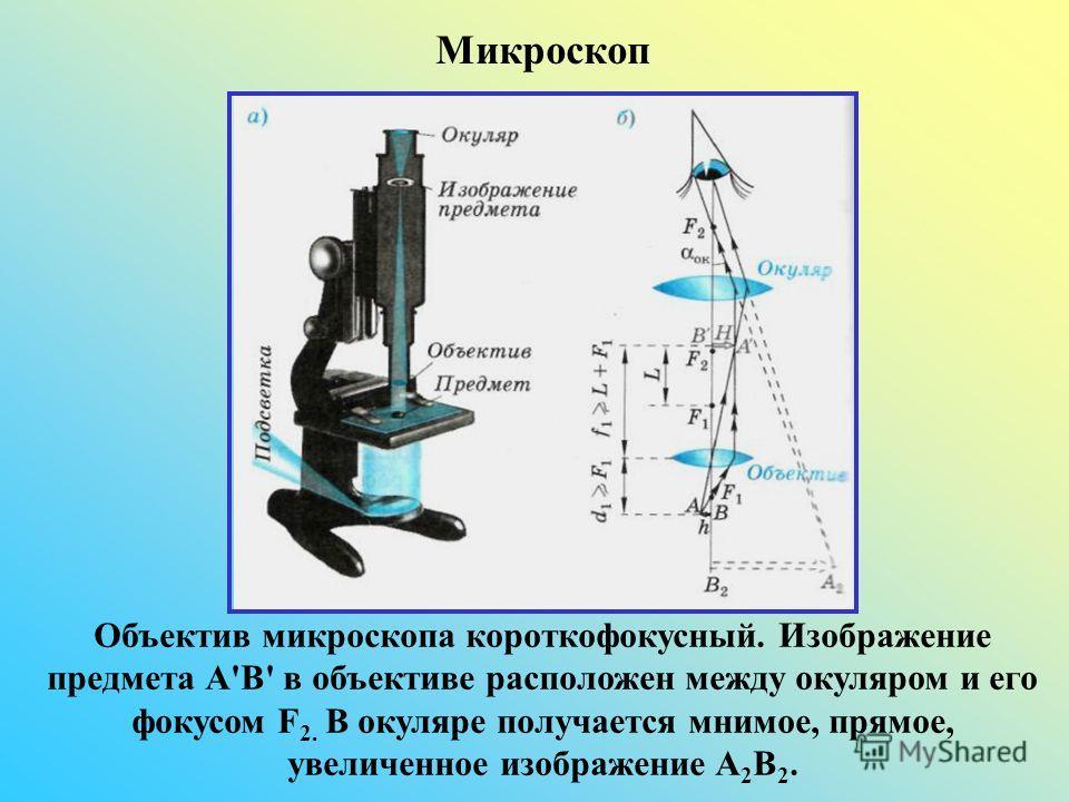 Объектив микроскопа короткофокусный. Изображение предмета А'В' в объективе расположен между окуляром и его фокусом F 2. В окуляре получается мнимое, прямое, увеличенное изображение А 2 В 2. Микроскоп