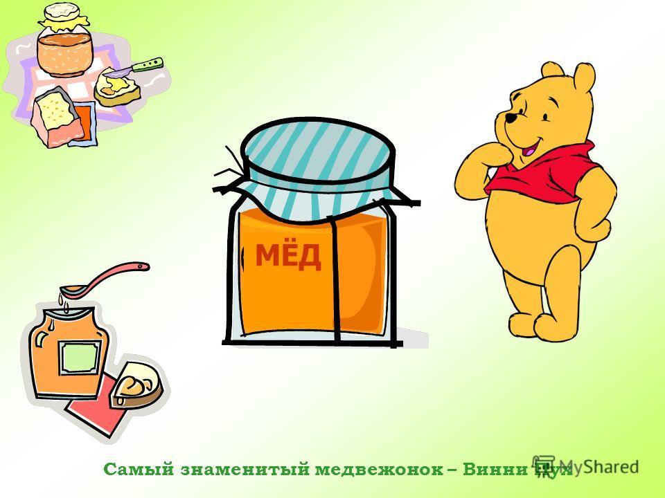БУРЫЙ МЕДВЕДЬ Медведь живет в берлоге. Всю зиму он спит в своем доме, живет за счет накопленных жировых запасов. Весной бурый медведь просыпается.