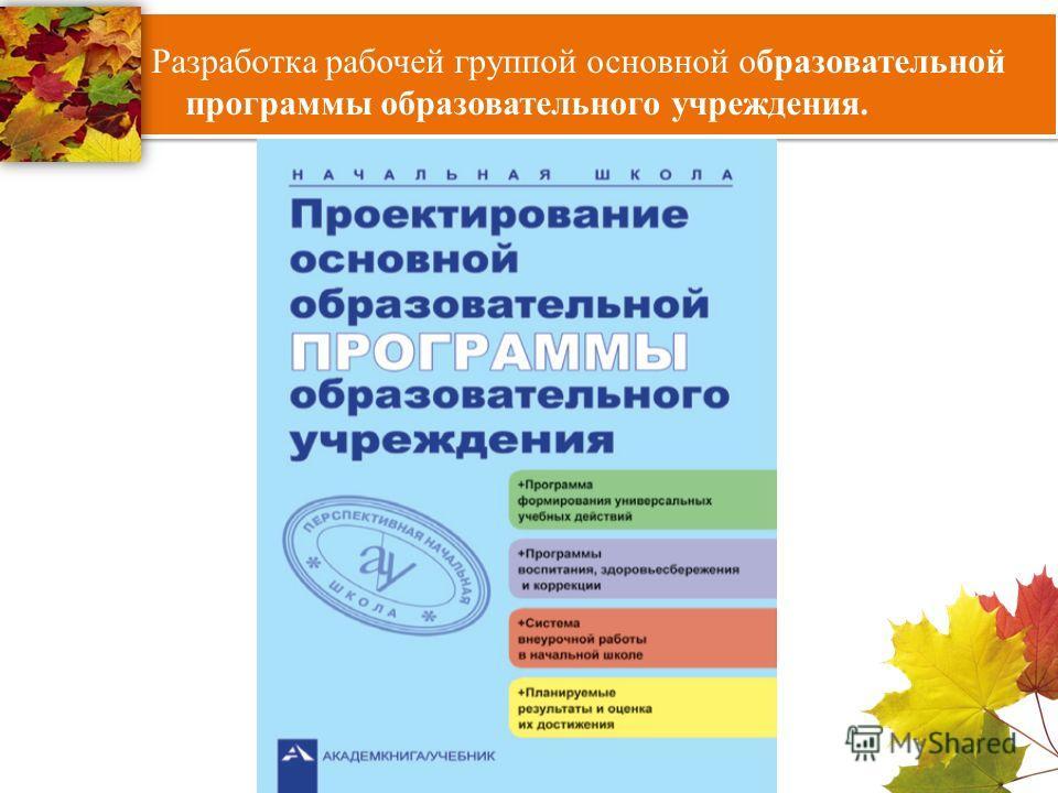 Разработка рабочей группой основной образовательной программы образовательного учреждения.
