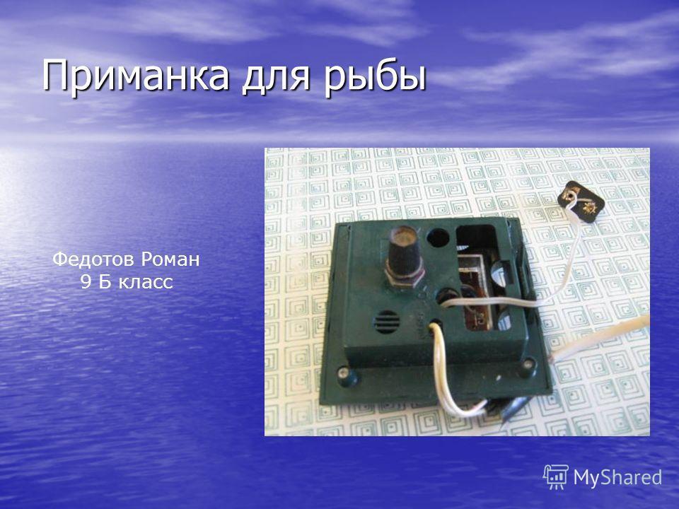 Приманка для рыбы Федотов Роман 9 Б класс