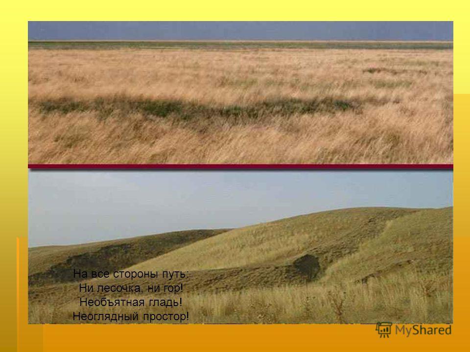 Природные зоны России. Зона пустынь.