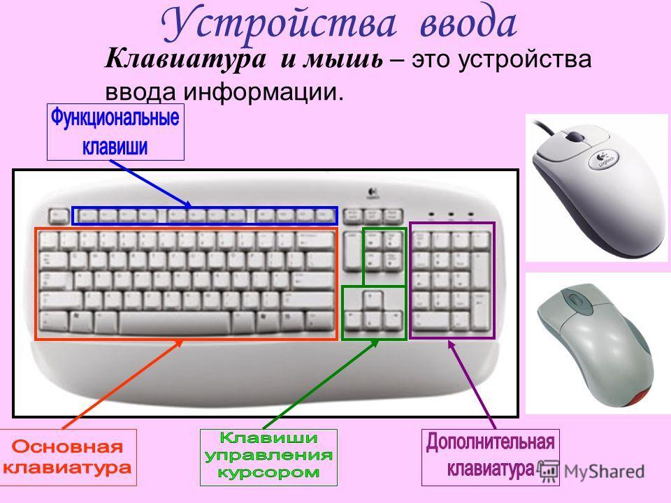 Устройства ввода Клавиатура и мышь – это устройства ввода информации.
