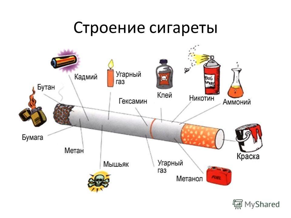 Строение сигареты