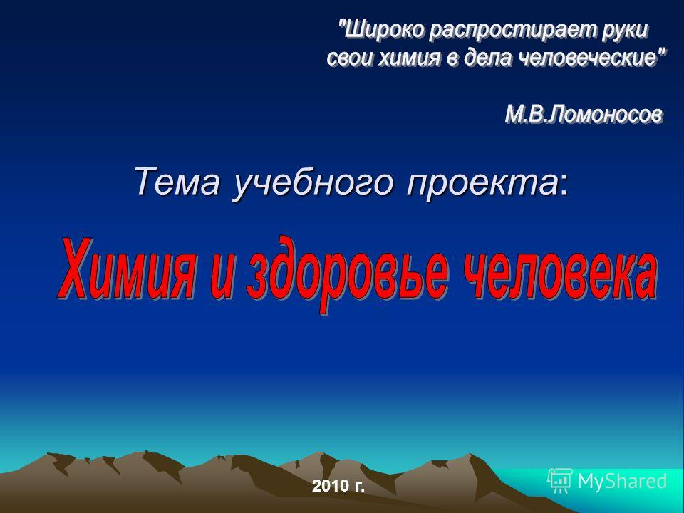 Тема учебного проекта: 2010 г.