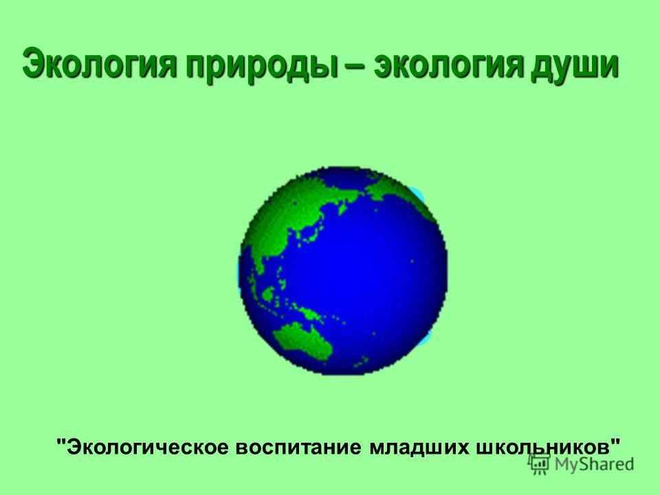 Экологическое воспитание младших школьников Экология природы – экология души