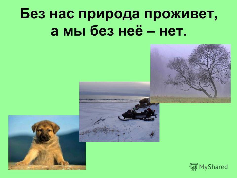 Без нас природа проживет, а мы без неё – нет.