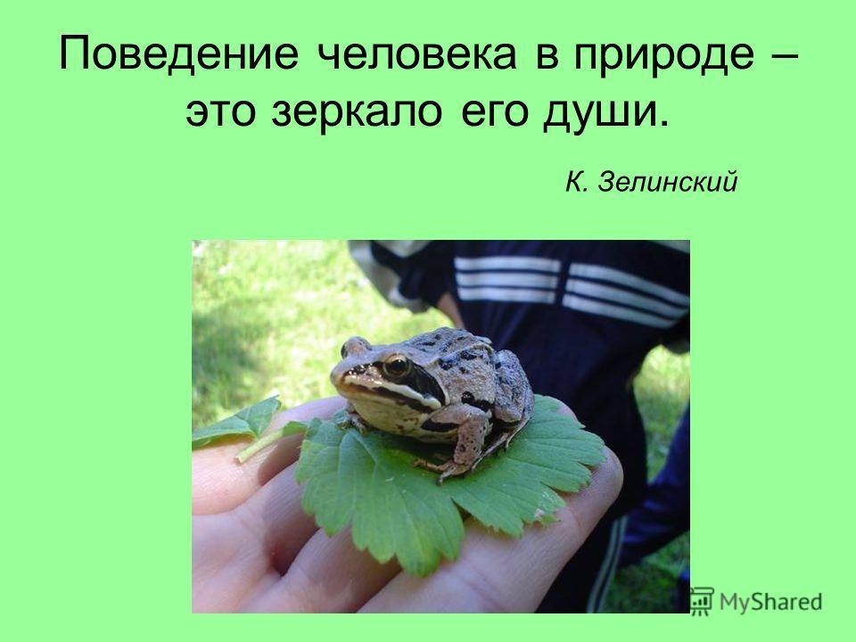 Поведение человека в природе – это зеркало его души. К. Зелинский