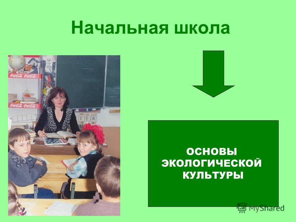 Начальная школа ОСНОВЫ ЭКОЛОГИЧЕСКОЙ КУЛЬТУРЫ