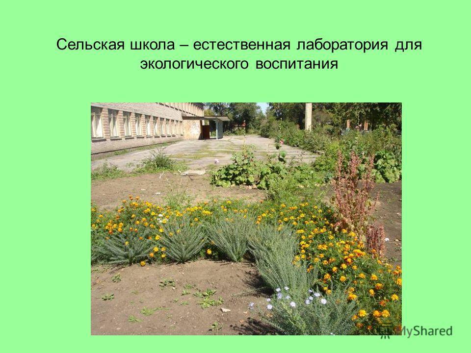 Сельская школа – естественная лаборатория для экологического воспитания
