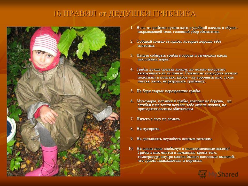 10 ПРАВИЛ от ДЕДУШКИ ГРИБНИКА 1. В лес за грибами нужно идти в удобной одежде и обуви - закрывающей тело, головной убор обязателен. 1. В лес за грибами нужно идти в удобной одежде и обуви - закрывающей тело, головной убор обязателен. 2. Собирай тольк
