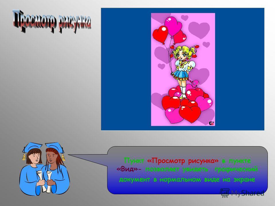 Пункт «Просмотр рисунка» в пункте «Вид»- позволяет увидеть графический документ в нормальном виде на экране