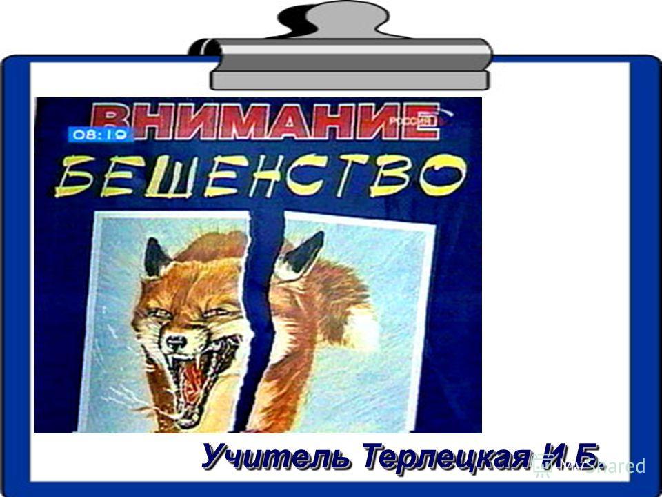 Учитель Терлецкая И.Б.