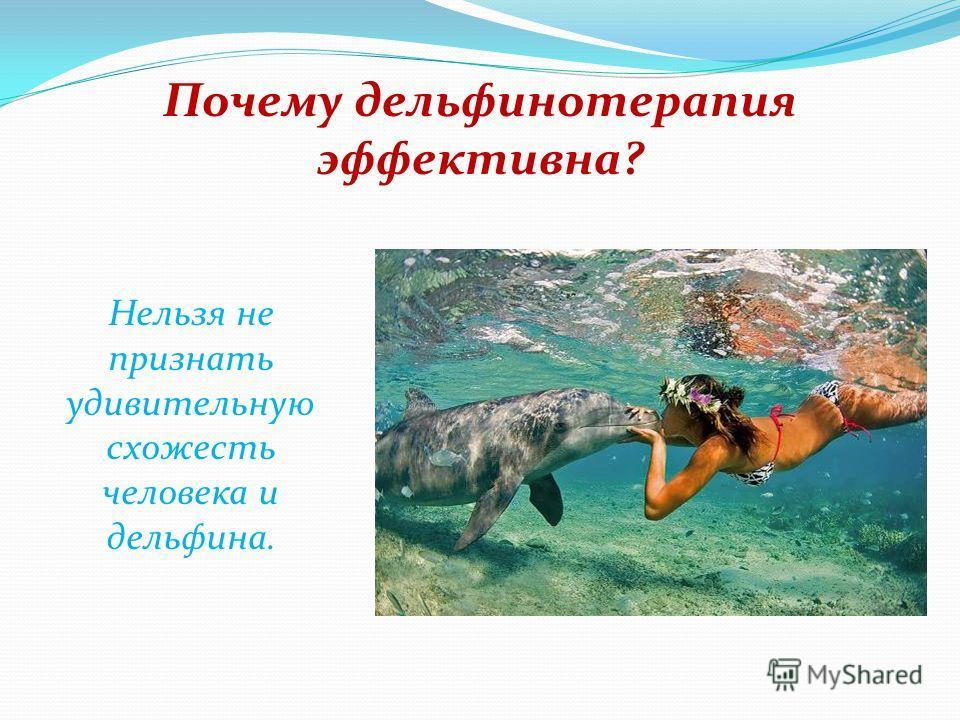 Почему дельфинотерапия эффективна? Дельфины - очень открытые и добрые существа.