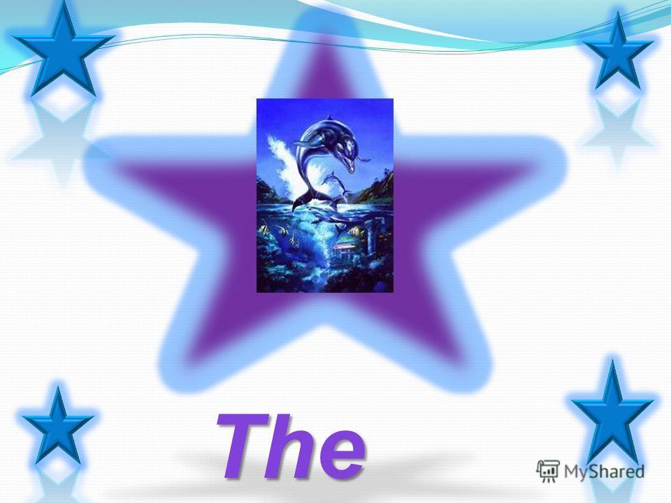 Результат Проведено исследование на тему жизни и особенностей дельфинов. 1.Собраны основные сведения о строении и поведении дельфинов в природе 2.Получена информация о схожести дельфинов с людьми и дельфинотерапии 3.Составлен список первых шагов помо