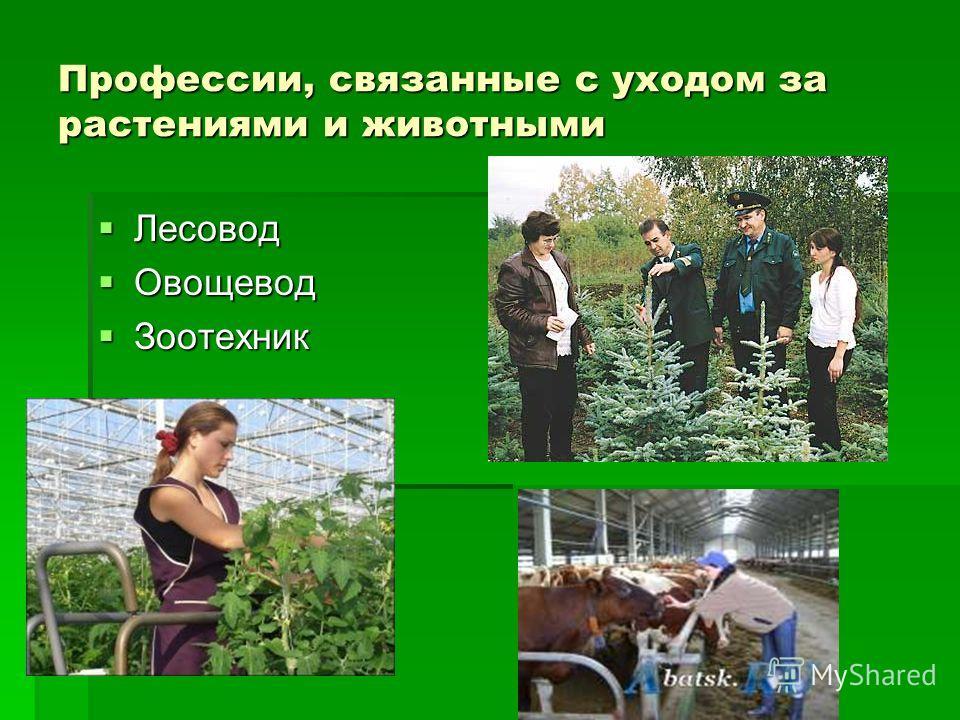 Профессии, связанные с уходом за растениями и животными Лесовод Лесовод Овощевод Овощевод Зоотехник Зоотехник