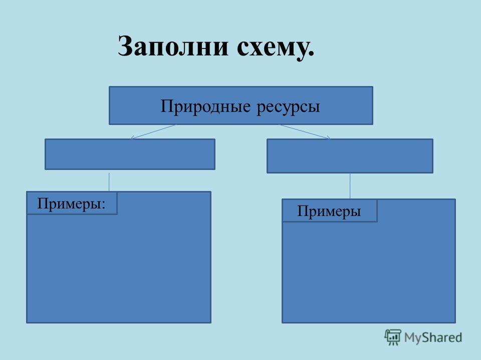 Заполни схему. Природные ресурсы Примеры: Примеры