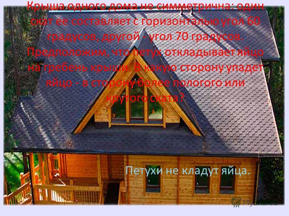 Крыша одного дома не симметрична: один скат ее составляет с горизонталью угол 60 градусов, другой - угол 70 градусов. Предположим, что петух откладывает яйцо на гребень крыши. В какую сторону упадет яйцо - в сторону более пологого или крутого ската?