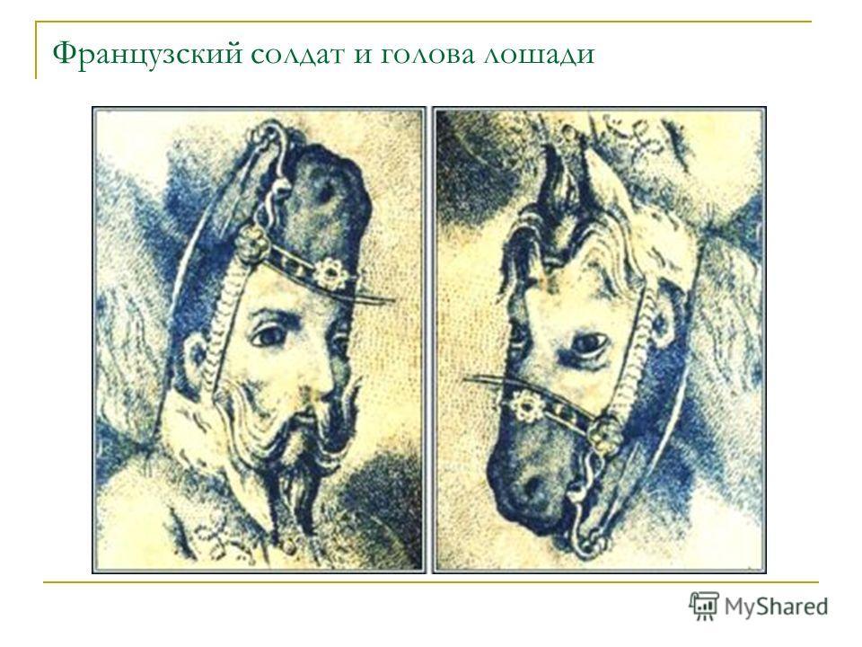 Французский солдат и голова лошади
