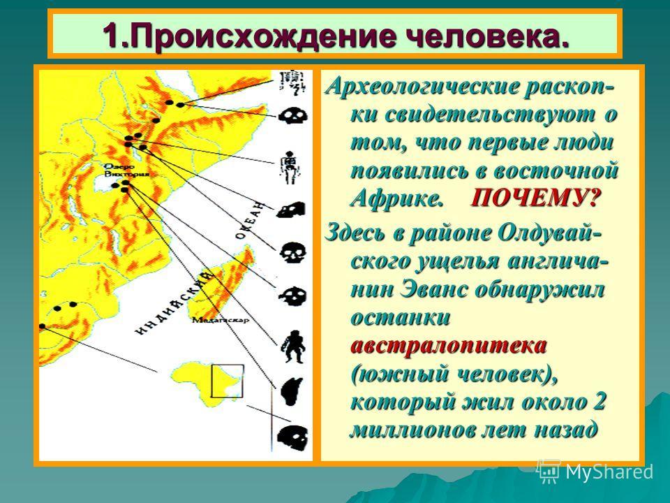 Задание на урок Запишите в тетради - Чем древние люди отличались от животных ? Чем древние люди отличались от животных ?