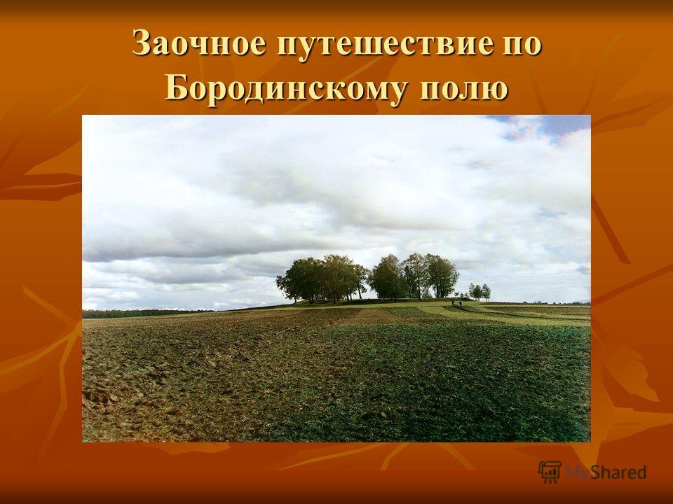 Заочное путешествие по Бородинскому полю