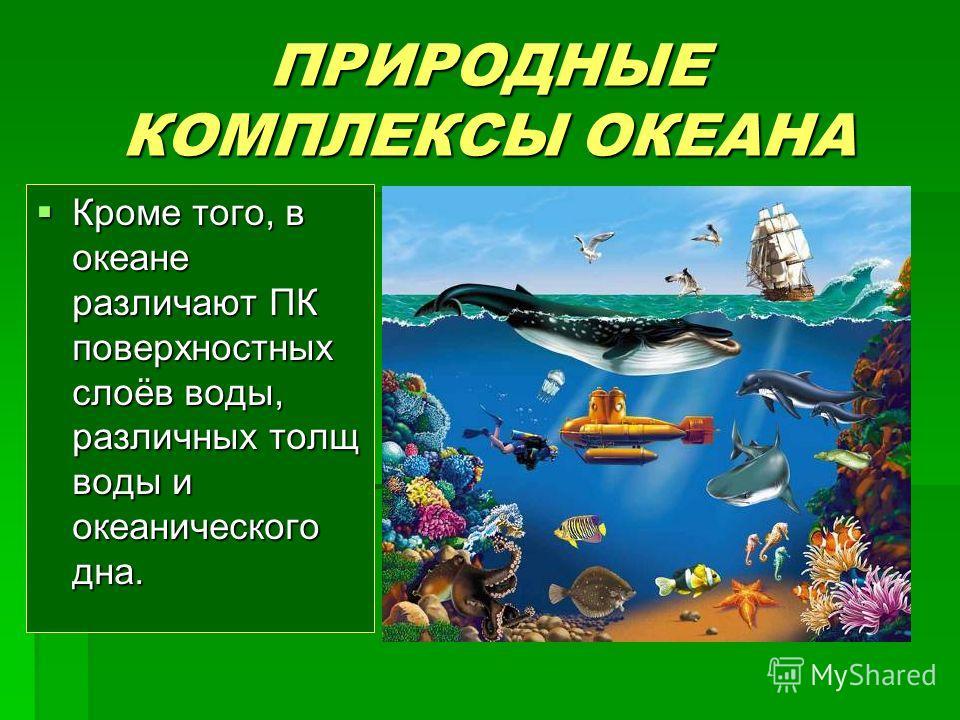 ПРИРОДНЫЕ КОМПЛЕКСЫ ОКЕАНА Кроме того, в океане различают ПК поверхностных слоёв воды, различных толщ воды и океанического дна. Кроме того, в океане различают ПК поверхностных слоёв воды, различных толщ воды и океанического дна.