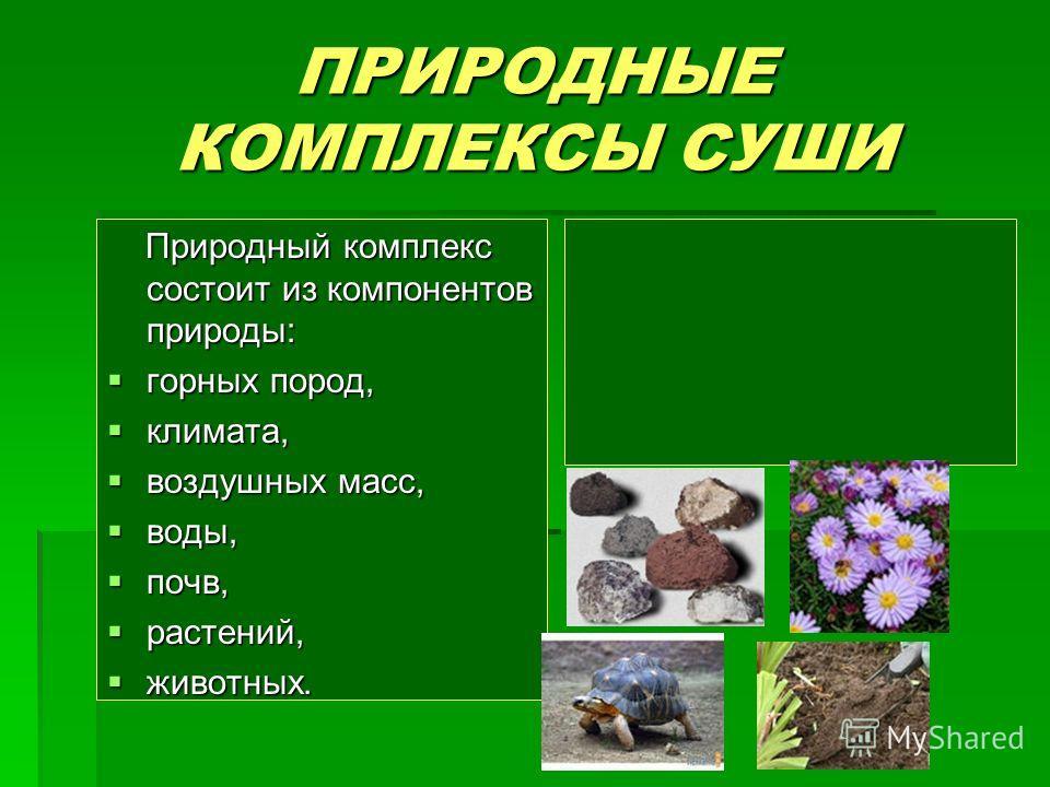 ПРИРОДНЫЕ КОМПЛЕКСЫ СУШИ Природный комплекс состоит из компонентов природы: Природный комплекс состоит из компонентов природы: горных пород, горных пород, климата, климата, воздушных масс, воздушных масс, воды, воды, почв, почв, растений, растений, ж