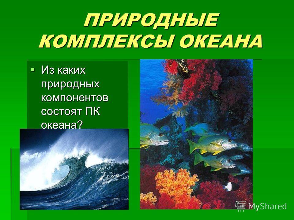 ПРИРОДНЫЕ КОМПЛЕКСЫ ОКЕАНА Из каких природных компонентов состоят ПК океана? Из каких природных компонентов состоят ПК океана?