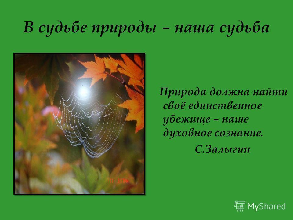 В судьбе природы – наша судьба Природа должна найти своё единственное убежище – наше духовное сознание. С.Залыгин