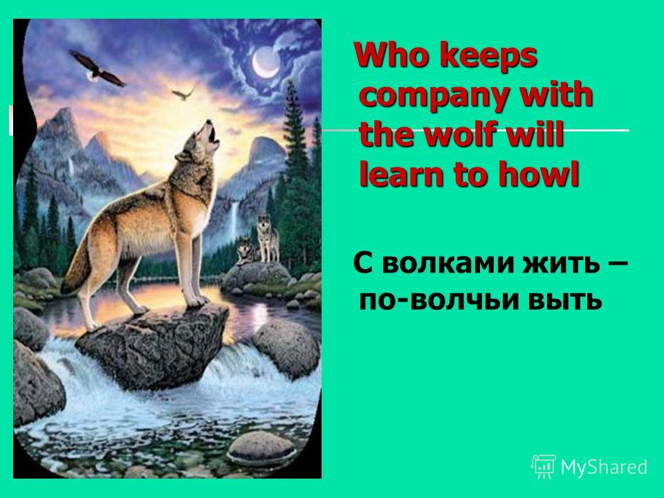 Who keeps company with the wolf will learn to howl Who keeps company with the wolf will learn to howl С волками жить – по-волчьи выть