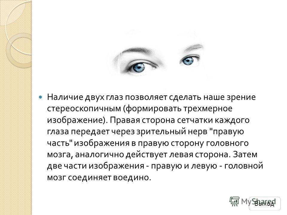 Наличие двух глаз позволяет сделать наше зрение стереоскопичным ( формировать трехмерное изображение ). Правая сторона сетчатки каждого глаза передает через зрительный нерв
