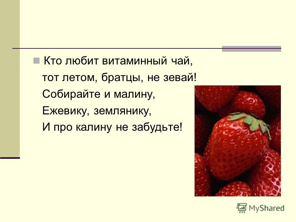 Кто любит витаминный чай, тот летом, братцы, не зевай! Собирайте и малину, Ежевику, землянику, И про калину не забудьте!