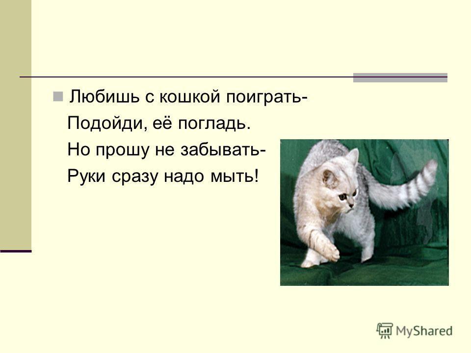 Любишь с кошкой поиграть- Подойди, её погладь. Но прошу не забывать- Руки сразу надо мыть!