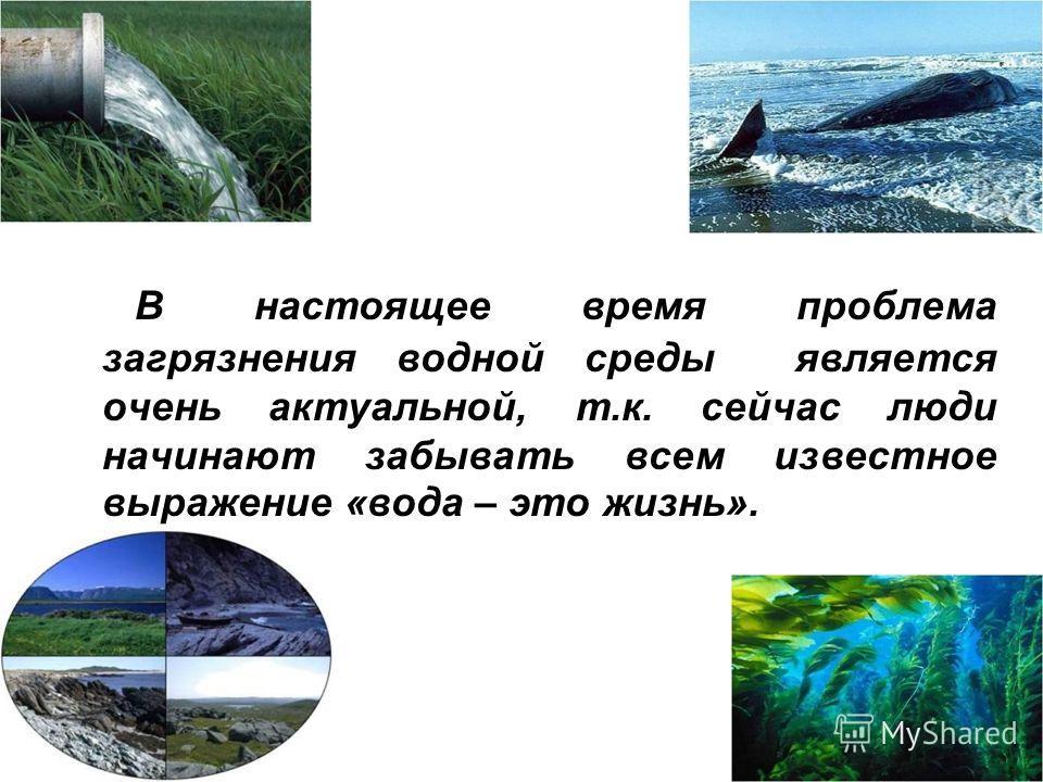 В настоящее время проблема загрязнения водной среды является очень актуальной, т.к. сейчас люди начинают забывать всем известное выражение «вода – это жизнь».