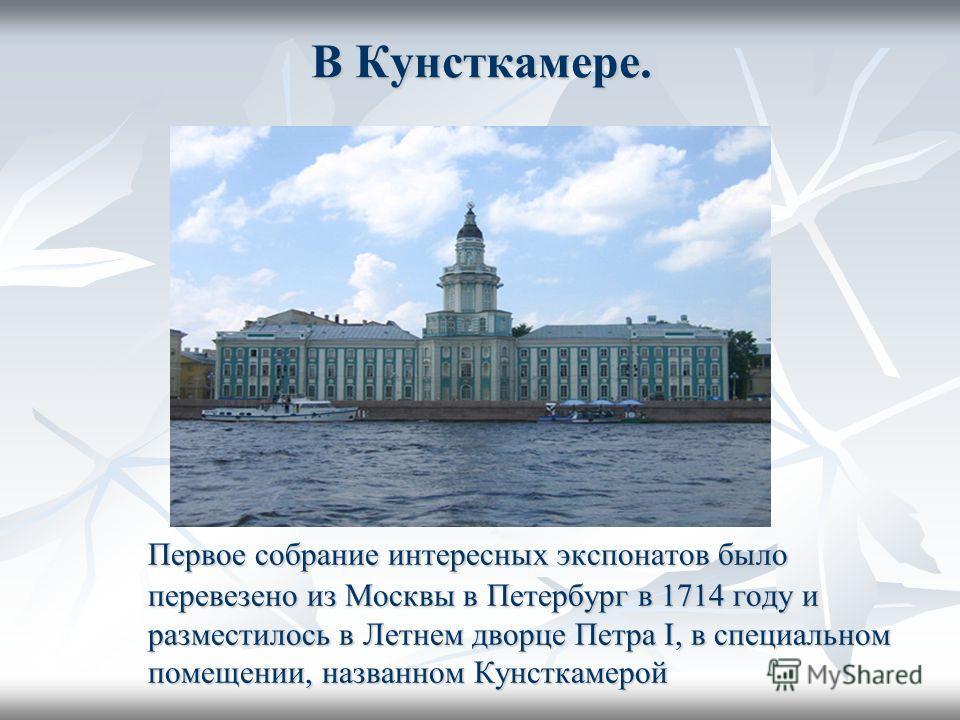 В Кунсткамере. Первое собрание интересных экспонатов было перевезено из Москвы в Петербург в 1714 году и разместилось в Летнем дворце Петра I, в специальном помещении, названном Кунсткамерой