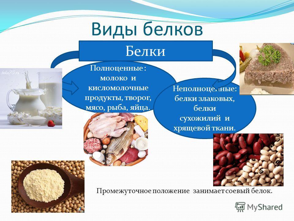 Виды белков Промежуточное положение занимает соевый белок. Белки Полноценные : молоко и кисломолочные продукты, творог, мясо, рыба, яйца. Неполноценные: белки злаковых, белки сухожилий и хрящевой ткани.