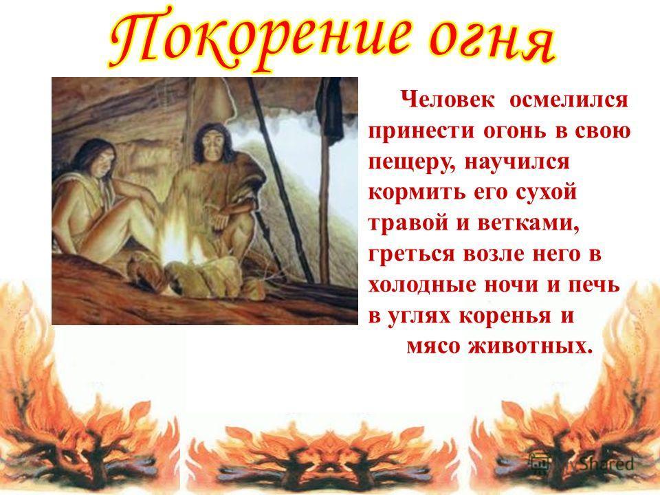 Человек осмелился принести огонь в свою пещеру, научился кормить его сухой травой и ветками, греться возле него в холодные ночи и печь в углях коренья и мясо животных.