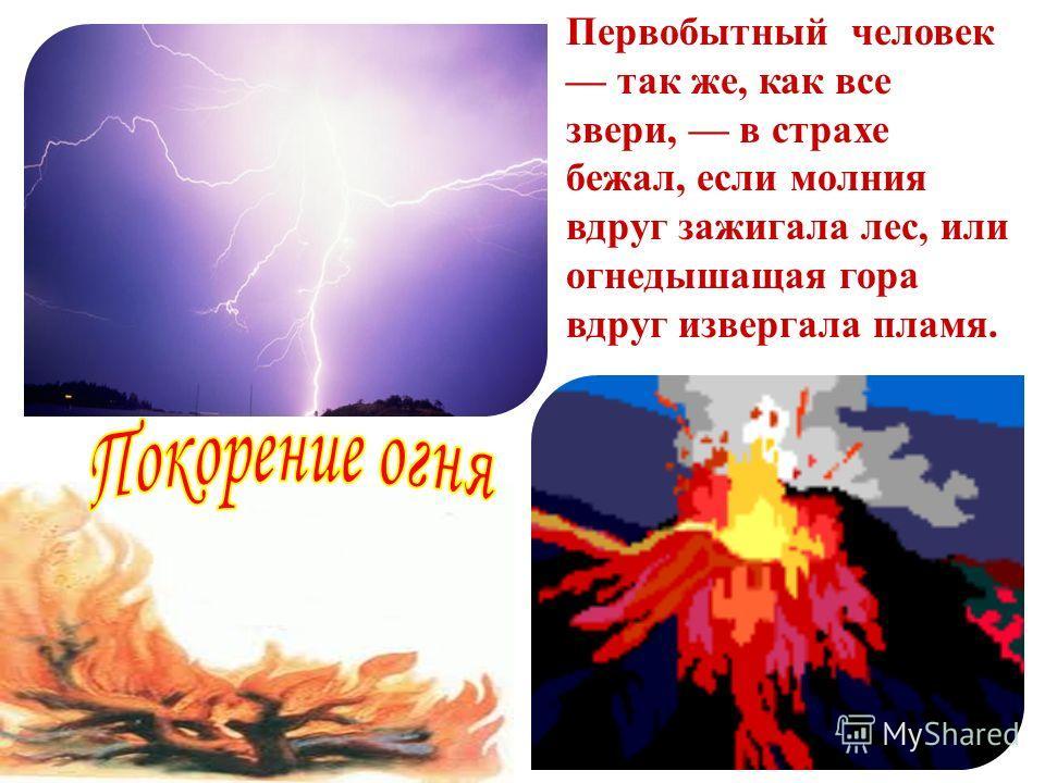 Первобытный человек так же, как все звери, в страхе бежал, если молния вдруг зажигала лес, или огнедышащая гора вдруг извергала пламя.