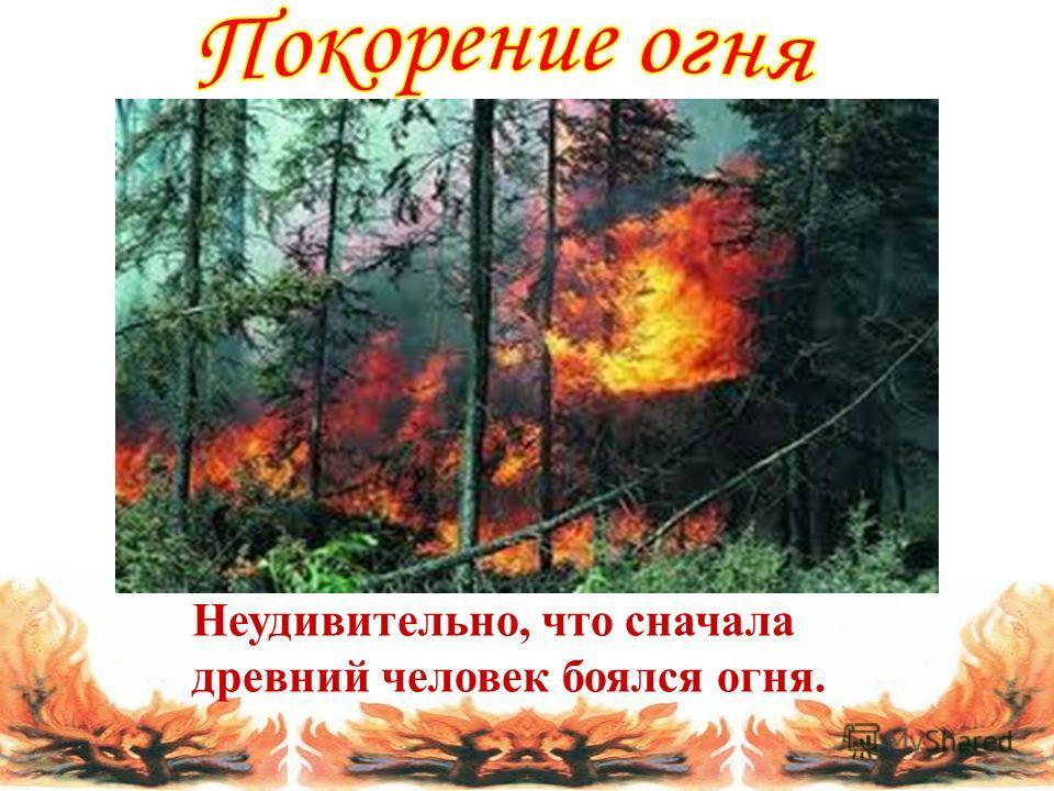 Неудивительно, что сначала древний человек боялся огня.