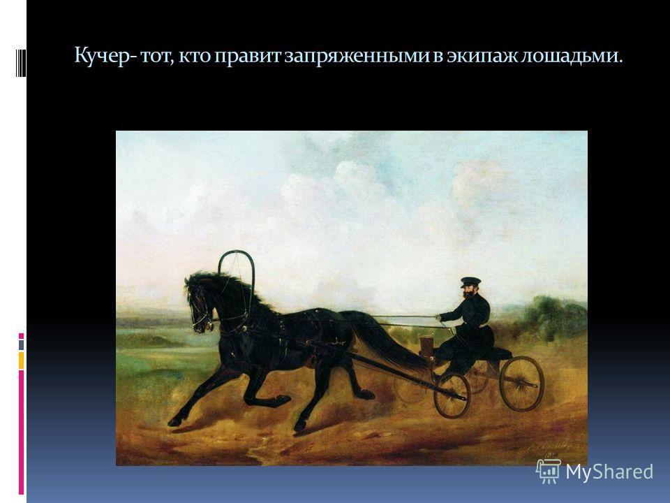Кучер- тот, кто правит запряженными в экипаж лошадьми.