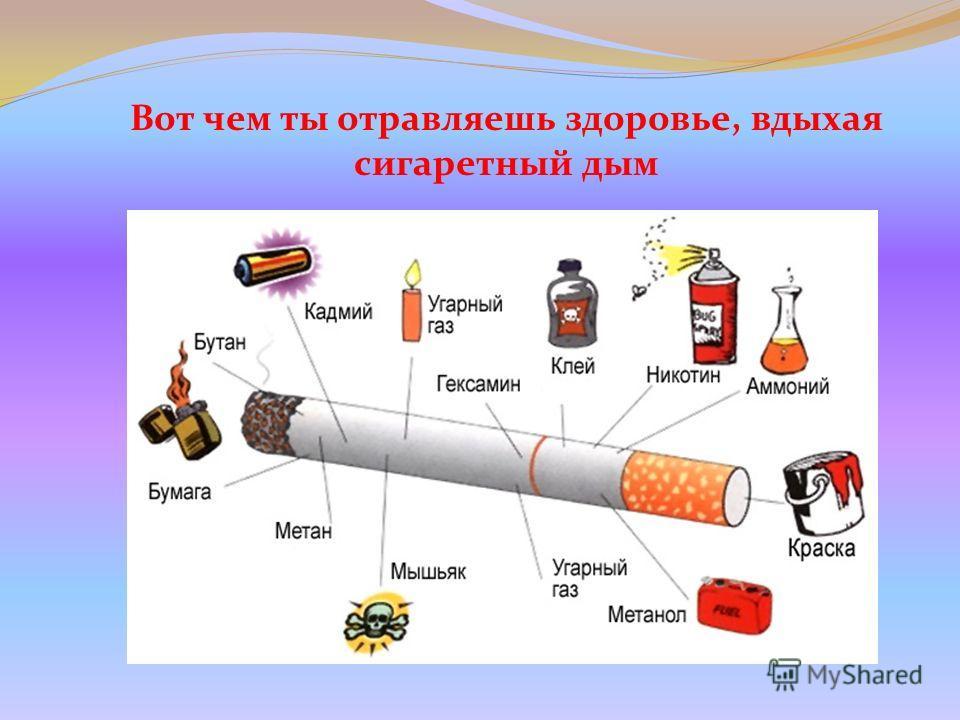 Вот чем ты отравляешь здоровье, вдыхая сигаретный дым