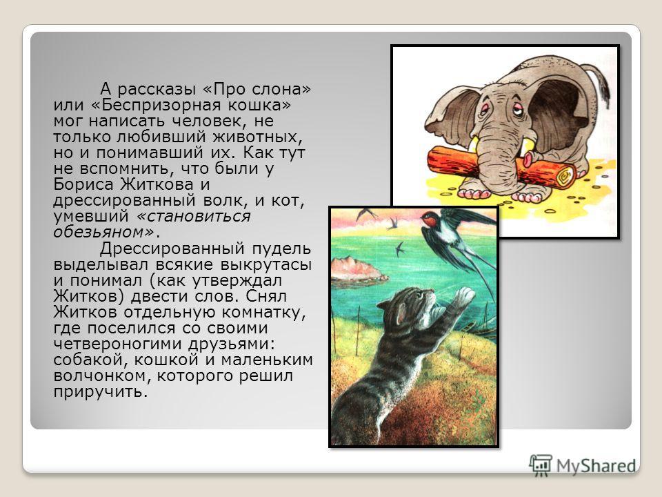 А рассказы «Про слона» или «Беспризорная кошка» мог написать человек, не только любивший животных, но и понимавший их. Как тут не вспомнить, что были у Бориса Житкова и дрессированный волк, и кот, умевший «становиться обезьяном». Дрессированный пудел