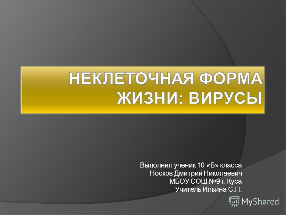 Выполнил ученик 10 «Б» класса Носков Дмитрий Николаевич МБОУ СОШ 9 г. Куса Учитель Ильина С.П.