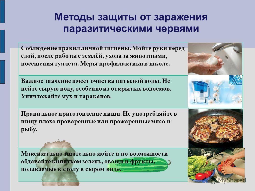 Методы защиты от заражения паразитическими червями Соблюдение правил личной гигиены. Мойте руки перед едой, после работы с землёй, ухода за животными, посещения туалета. Меры профилактики в школе. Важное значение имеет очистка питьевой воды. Не пейте