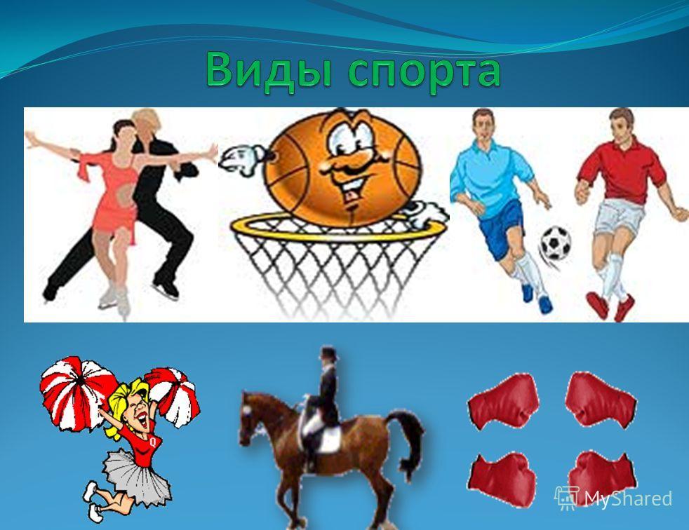 Тема: Виды спорта