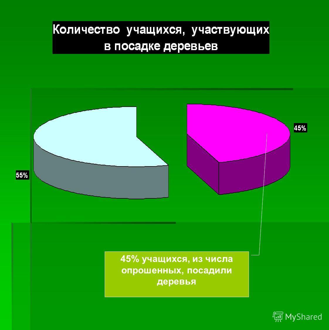 45% учащихся, из числа опрошенных, посадили деревья