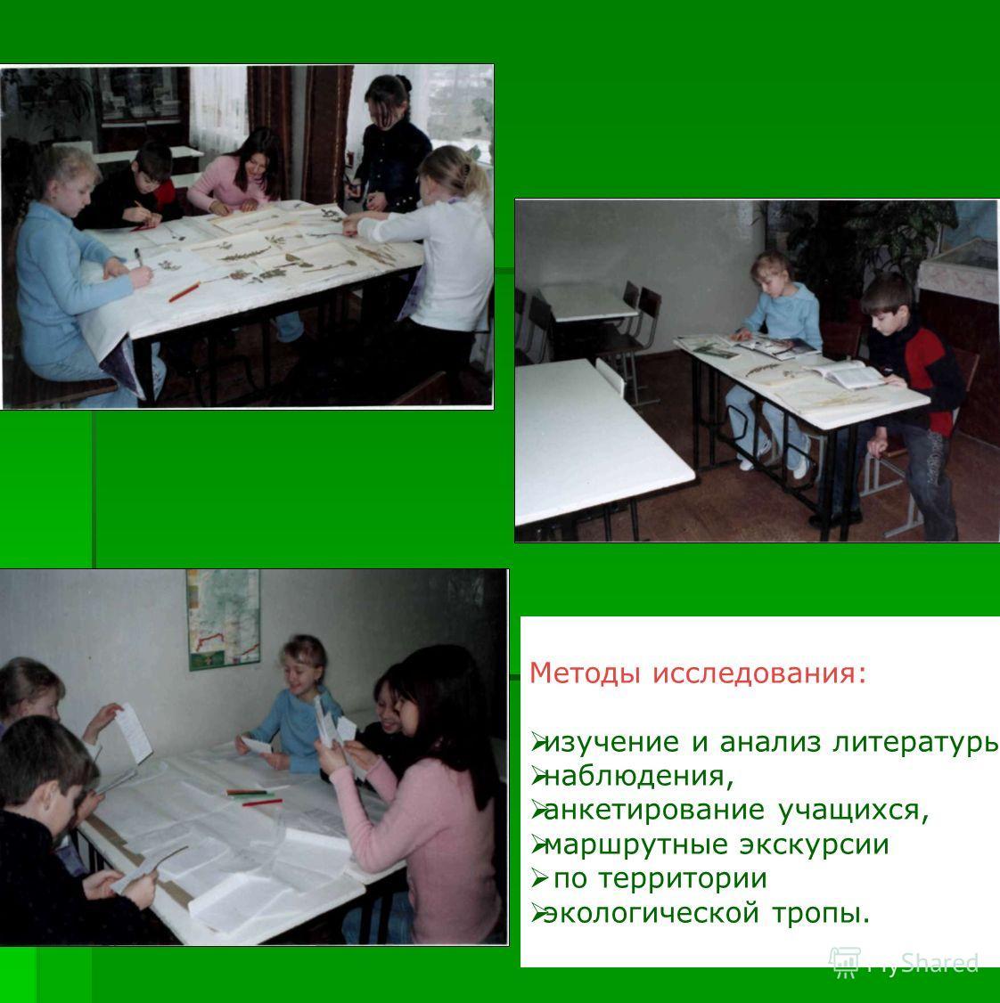 Методы исследования: изучение и анализ литературы, наблюдения, анкетирование учащихся, маршрутные экскурсии по территории экологической тропы.